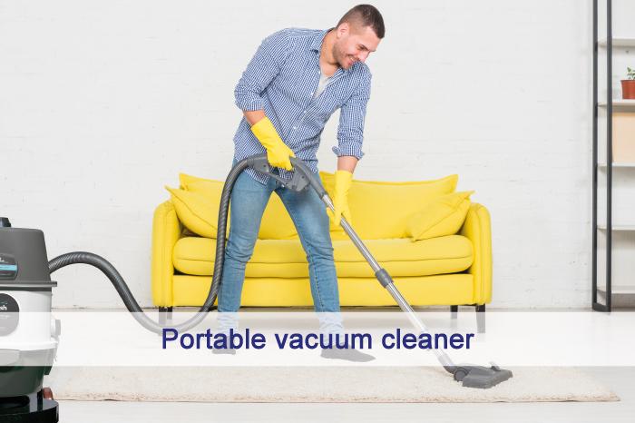 Portable vacuum cleaner